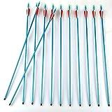 12 er Bogenpfeile Aluminiumpfeil Pfeile aus Aluminium mit Schraubspitze für Recurvebogen Sportbogen Compoundbogen (blau)